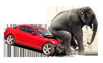 Cum sa obtii un rca ieftin pentru autoturismul tau